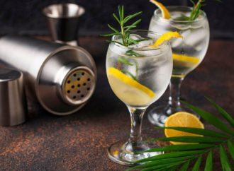 Das Gin Rezeptbuch mit über 150 leckeren Rezepten